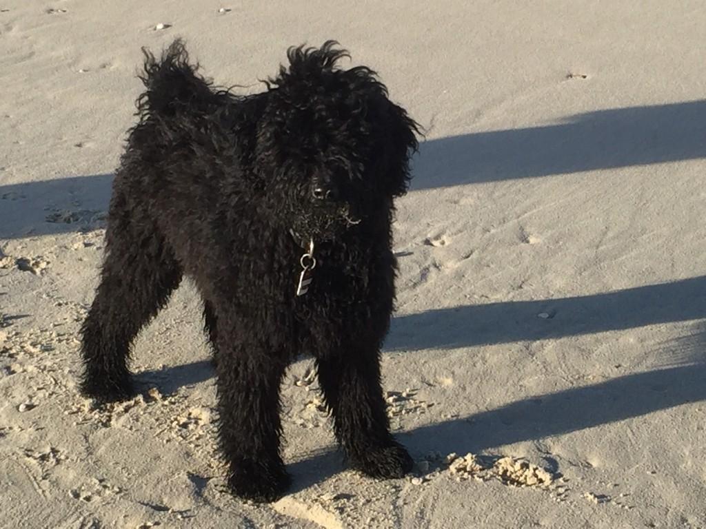 Anni im Sand